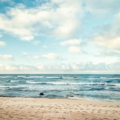 Fresh Breeze - Jennifer Vahlbruch