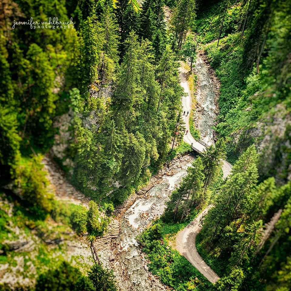 Mountain Forest Creek - Jennifer Vahlbruch